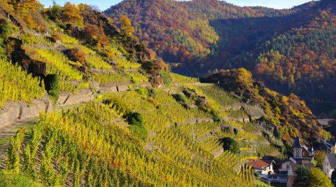 Herbst im Ahrtal
